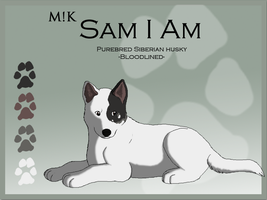 M!K Sam I Am Ref Sheet by xMush-Kennelsx