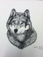 Gray Wolf by masquerade5020
