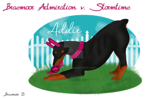Braemoor Admiration v. Stormtime - Puppy Ref by Braemoor