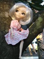 In the Tree by pullip
