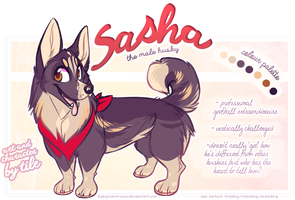 sasha by BabyWolverines