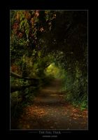 The Fall Trail by Nategeorge