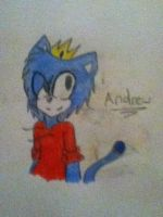 andrew by LethalWeapon07