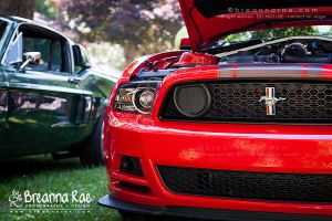 Mustang Boss 302 by breanna-rae