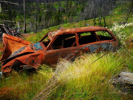 BUSTED AND RUSTED by pattywootton