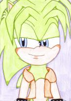 manic the hedgehog by rebemci