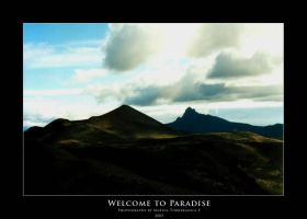 Welcome to Paradise by specialsally