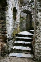 Berry Pomeroy Castle 9 GothicBohemianStock by OghamMoon