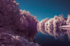 Infrared Lake by exogadget