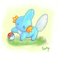I choose Mudkip! by EemsArt