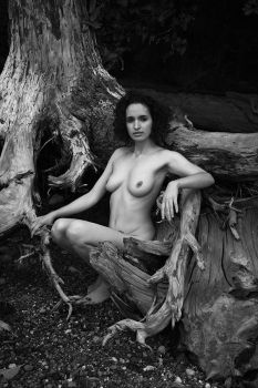 CandyPoses 2, Roots, 060 by photoscot