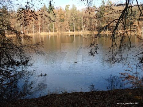 The Lake in Autumn 2 by white-elephant11