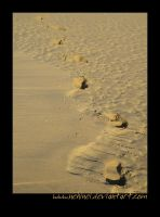 Footsteps In The Sand by nehinei