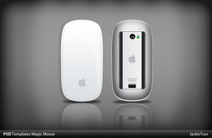 Magic Mouse PSD Templates by JackieTran