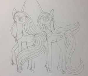 Iris- Hera MLP- Not Colored