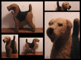 Ted the Airedale by flyingduster