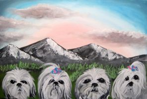 Fluffy Rushmore by Rayjmaraca