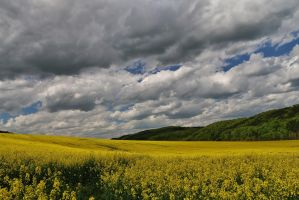 sky in may by Dieffi