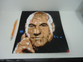 Captain Jean Luc Picard by Ebion