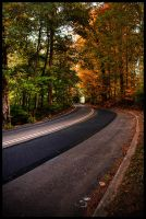 country_roads_005 by ahedrick201