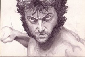 Hugh Jackman as Wolverine by LucasAckerman