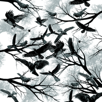 Blackbirds by dandingeroz