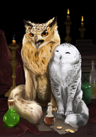owls by Brevis--art