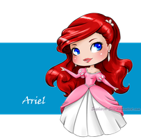 Ariel by sky-illuminated