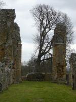 Bayham Abbey 14 by stormsorceress