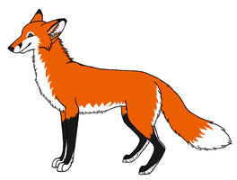 Red Fox Contest Entry by wolfforce58