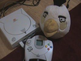 White Bird+Sega Dreamcast by KiraofTheInternet