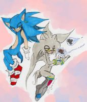 Silver and Sonic by YamiYumi
