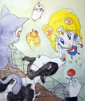 Sailor Moon saves animals... and finds love! by MauricioKanno