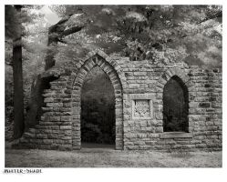 Doorway to the trees by whiter-shade