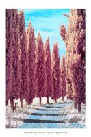 Tuscany IR - II by DimensionSeven