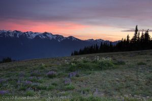Hurricane Ridge Sunset by austinboothphoto