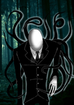 Slender's Woods by CrazyCrocuta
