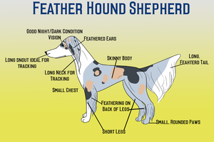 Feather Hound Shepherd by Sommer-Studios