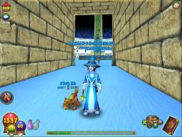 wizard101 by BloodysociopathKat