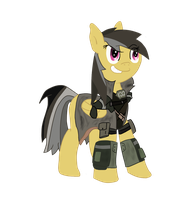 Daring Do in the Elite Riot Gear by GypZtheQuaker