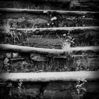 ..: stairs :.. by Moth-called-Marigold