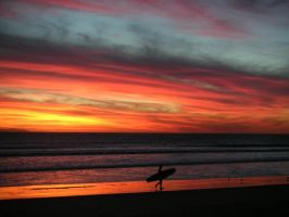 The Surfer by Fred647