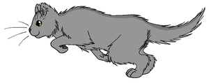 ThunderClan - Graystripe by WildpathOfShadowClan