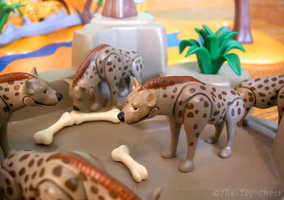 Playmobil Africa - Hyenas by The-Toy-Chest