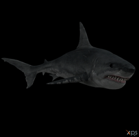 Crysis - Shark by Postmortacum