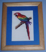 CrossStitch Cyrus ScarletMacaw by micadjems