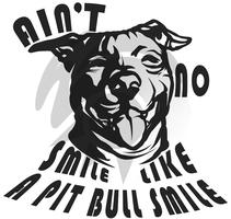 Aint No Smile... by NebulousStudio