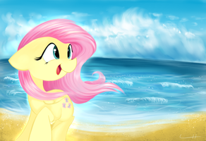 The Ocean Breeze by LCpegasister75