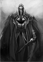 dark inquisitor by leonart87