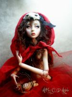 Red Riding Hood E by cdlitestudio